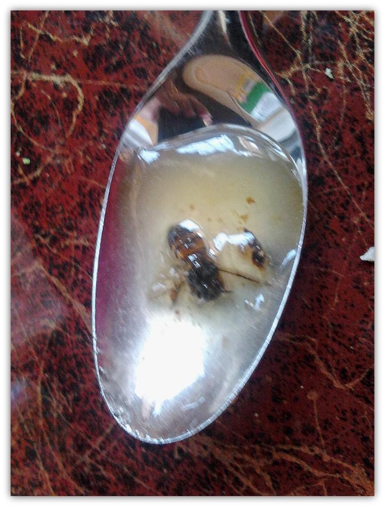 Bee spoon